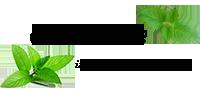 قیمت خرید و فروش انواع گیاه نعناع | نعناع ایرانی