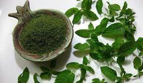گیاه دارویی نعناع قمی